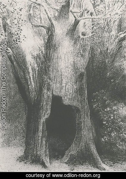 I plunged into solitude. I dwelt in the tree behind me. (plate 9)